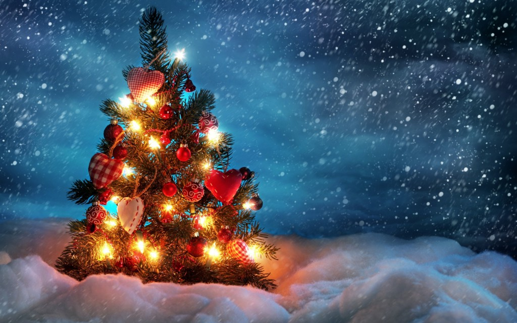 christmas-tree-in-the-snow-storm-1920x1200-wide-wallpapers.net[1]